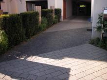 Garten mit Laubengang _01_.JPG